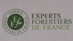 Cabinet d'expertise forestier : COUDERT
